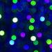 LHG_0177- festive lights
