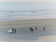 8th Dec 2019 - Ghost wedding on the beach ( Artist Challenge : Alexey Titarenko )