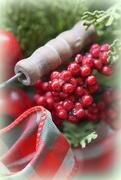 7th Dec 2019 - Berry Merry