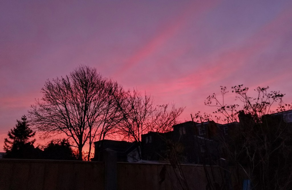 Red sky in the morning by boxplayer