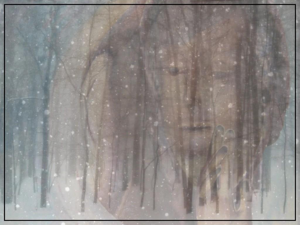 Winter's Whisper by olivetreeann
