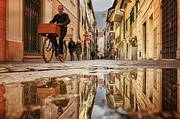 9th Dec 2019 - 2019-12-10 pozzanghera / puddle in Bolzano