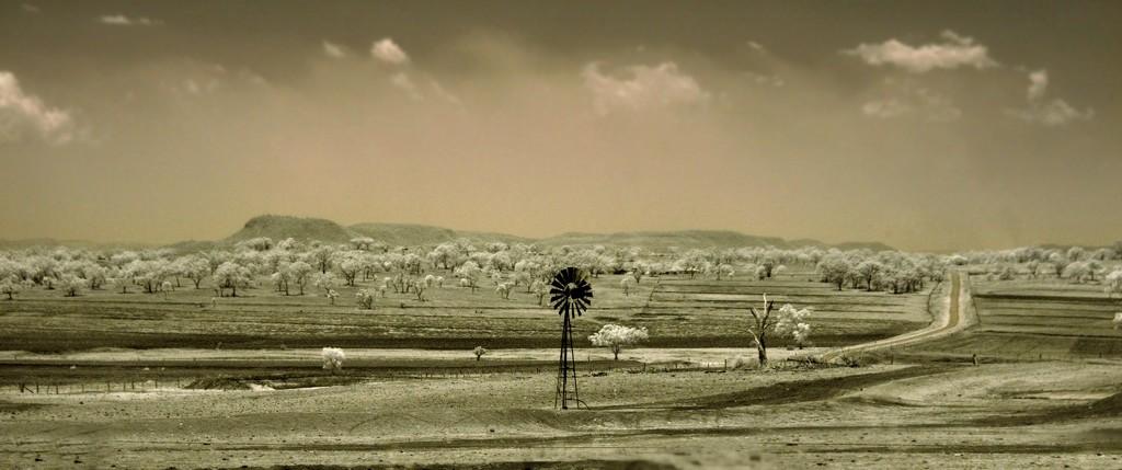IR landscape #3 by robz
