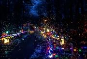 9th Dec 2019 - Lights (Through a Rain-Splashed Window)