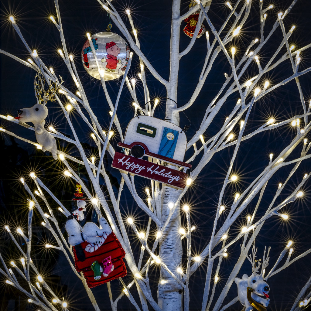 Happy Holidays by kvphoto