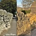 Cotswold Dry Stone Wall gives Birth.