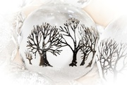 10th Dec 2019 - LHG_0315-tree ornaments