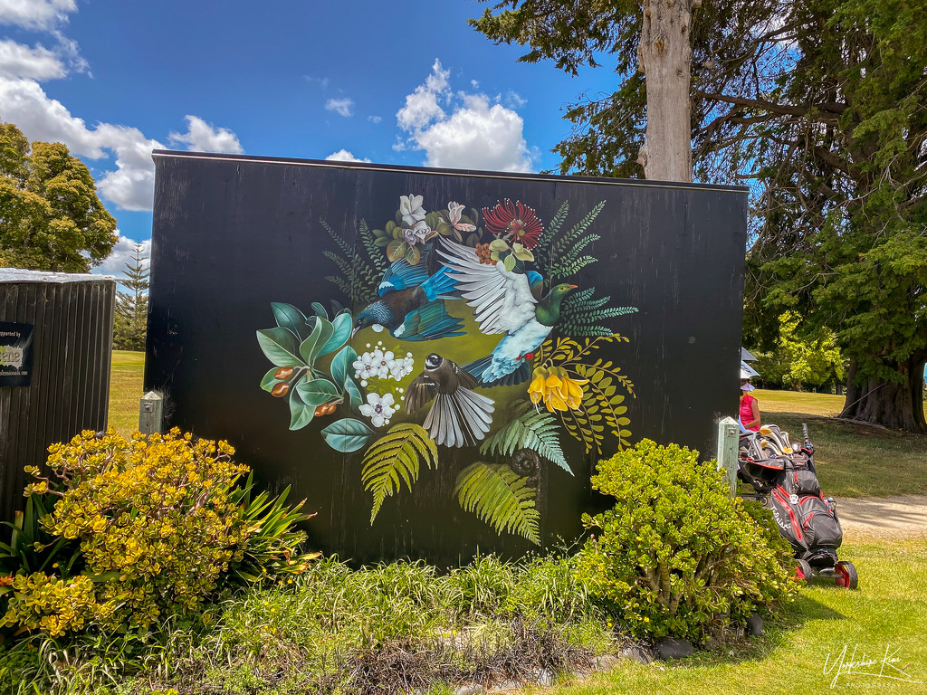 Mural on the Golf Course by yorkshirekiwi