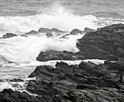 10th Dec 2019 - Newport Surf