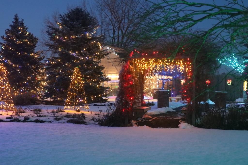 Winter Nights Winter Lights 1 by ladykassy46