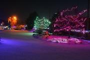 11th Dec 2019 - Winter Nights Winter Lights 5