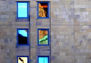 13th Dec 2019 - Window gallery