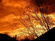 13th Dec 2019 - The Sky On Fire