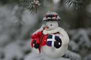 13th Dec 2019 - Snowman Ornament