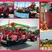Waiuku Christmas parade..