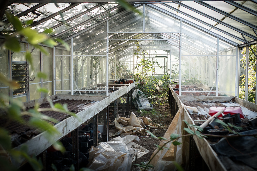 Poly Tunnel by newbank