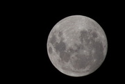 11th Dec 2019 - The last full moon of the decade.