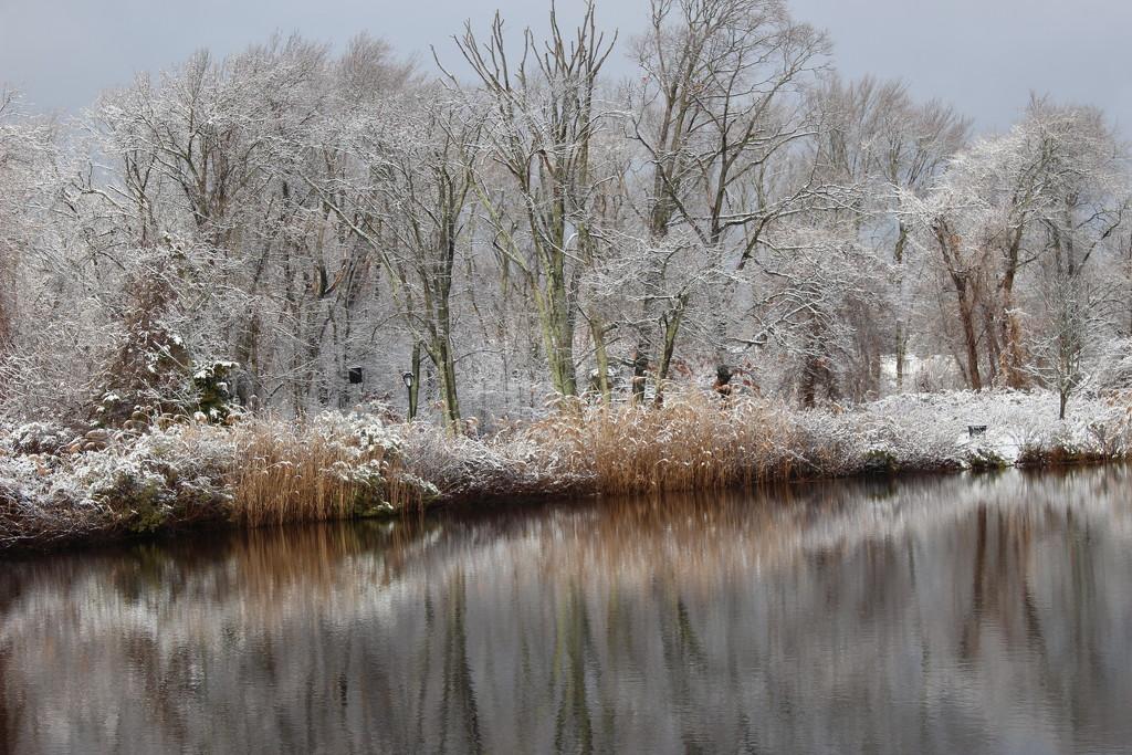 Snowy Scene by jb030958