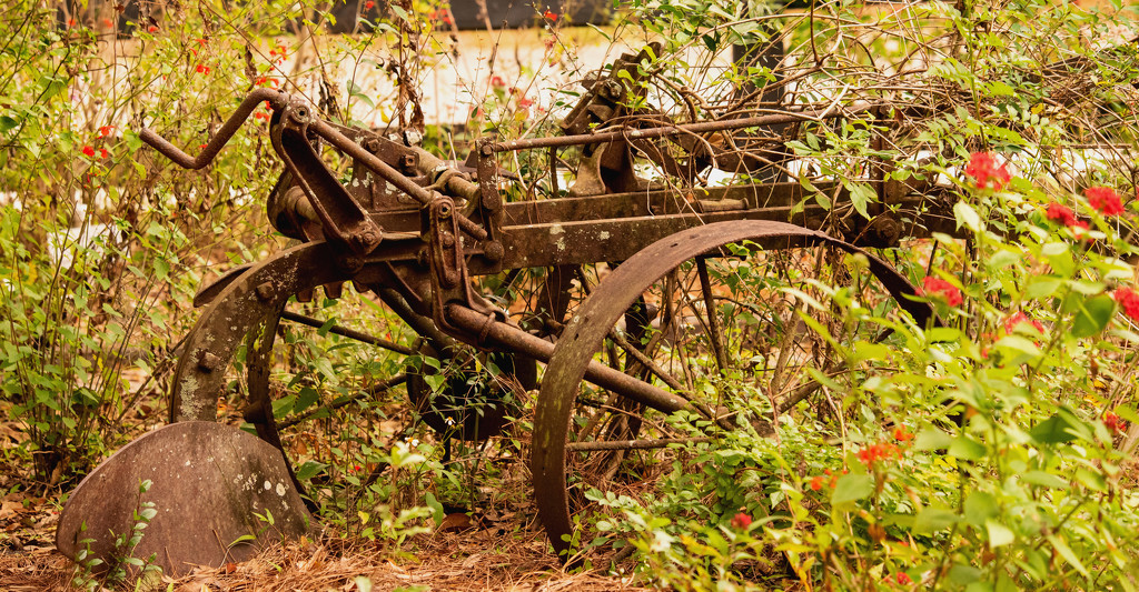 Old Rusty Plow! by rickster549