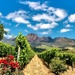 A view of the Helderberg