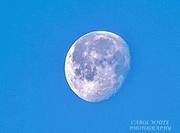 15th Dec 2019 - Morning Moon (handheld)