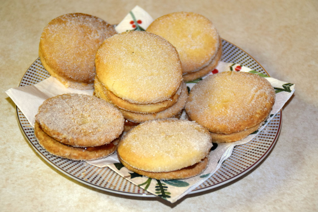 Yummy vanilla suger cookies by bruni