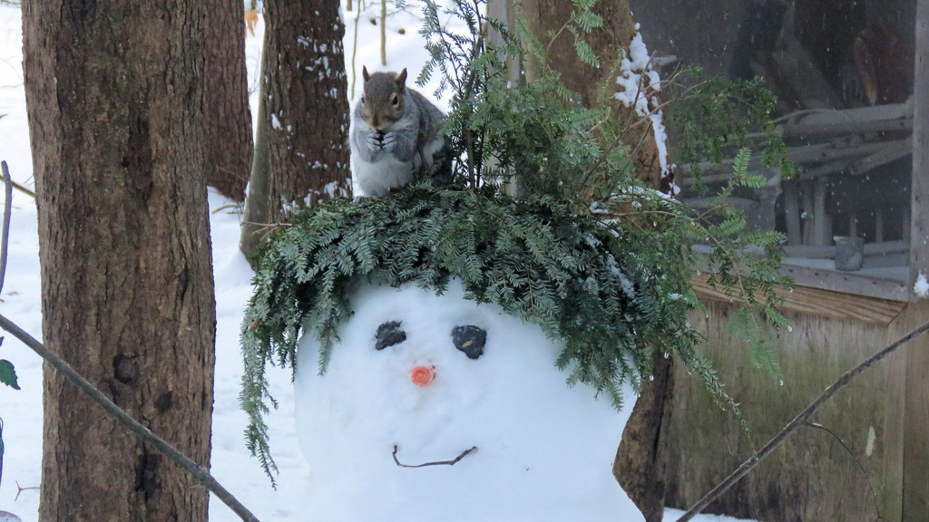Snowy guy and friend. by maggie2