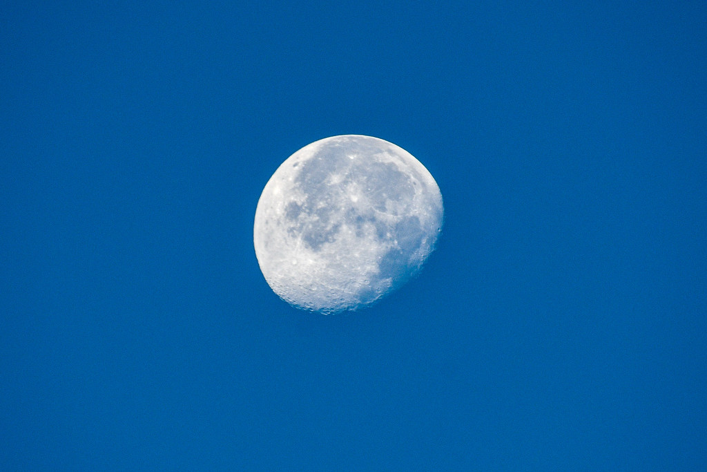 Sunday morning moon by danette