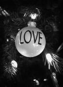 18th Dec 2019 - Love!