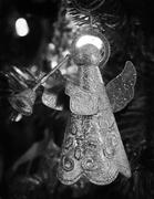 18th Dec 2019 - Angel Ornament