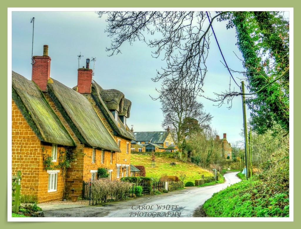 Village View  (Upper Harlestone) by carolmw