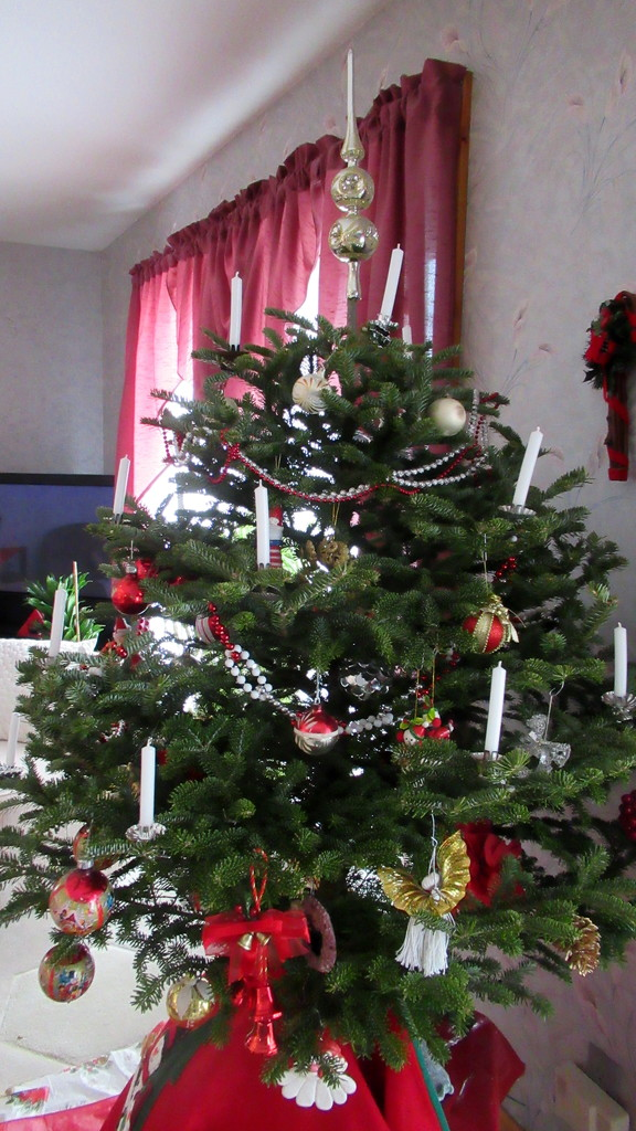 Our Christmas tree by bruni