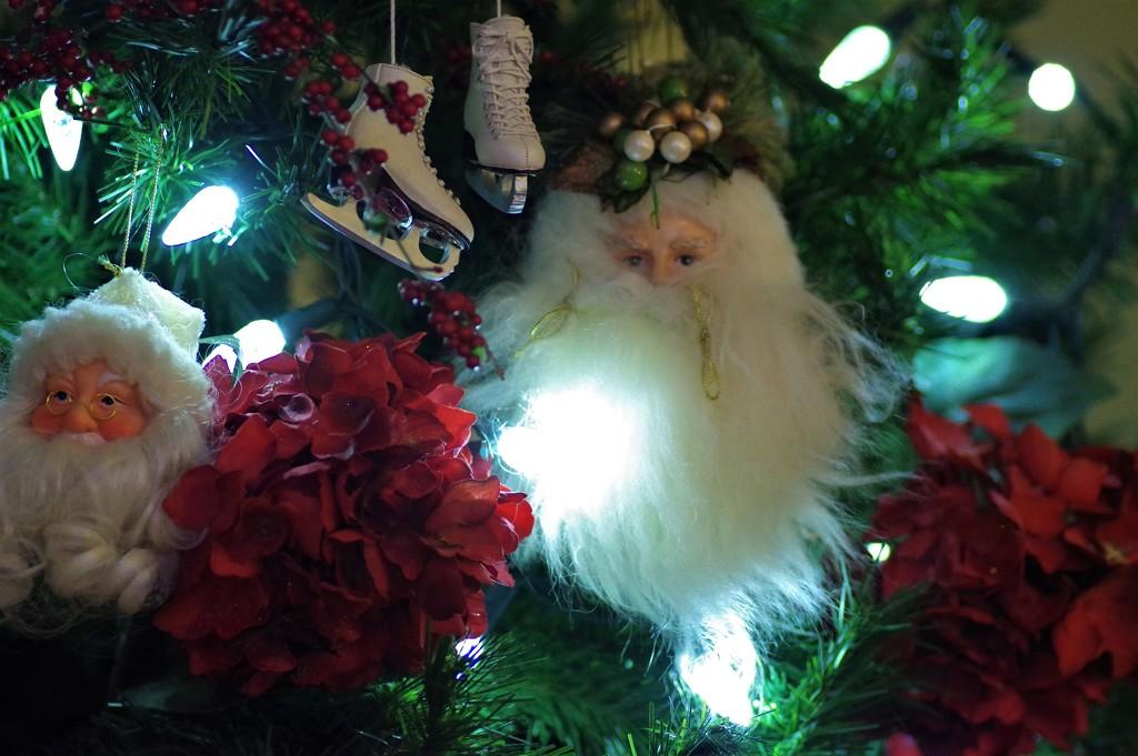 Christmas Tree by radiogirl