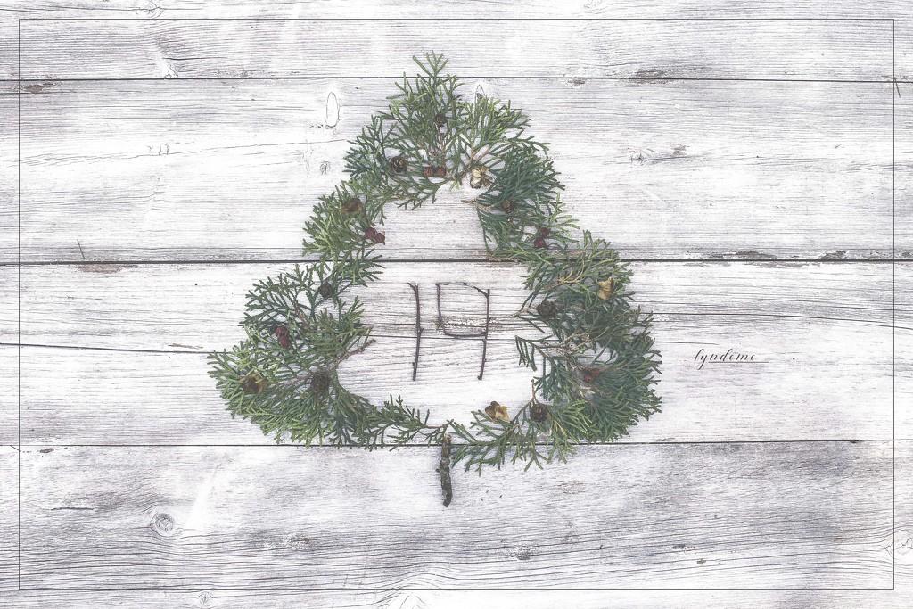A December Birthday by lyndemc