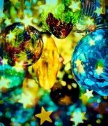 21st Dec 2019 - Blossomed the Lovely Stars