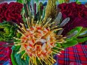 20th Dec 2019 - Christmas flowers