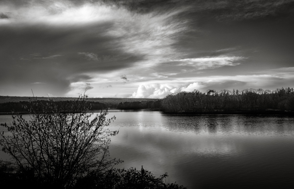 Photogenic Lake by vignouse