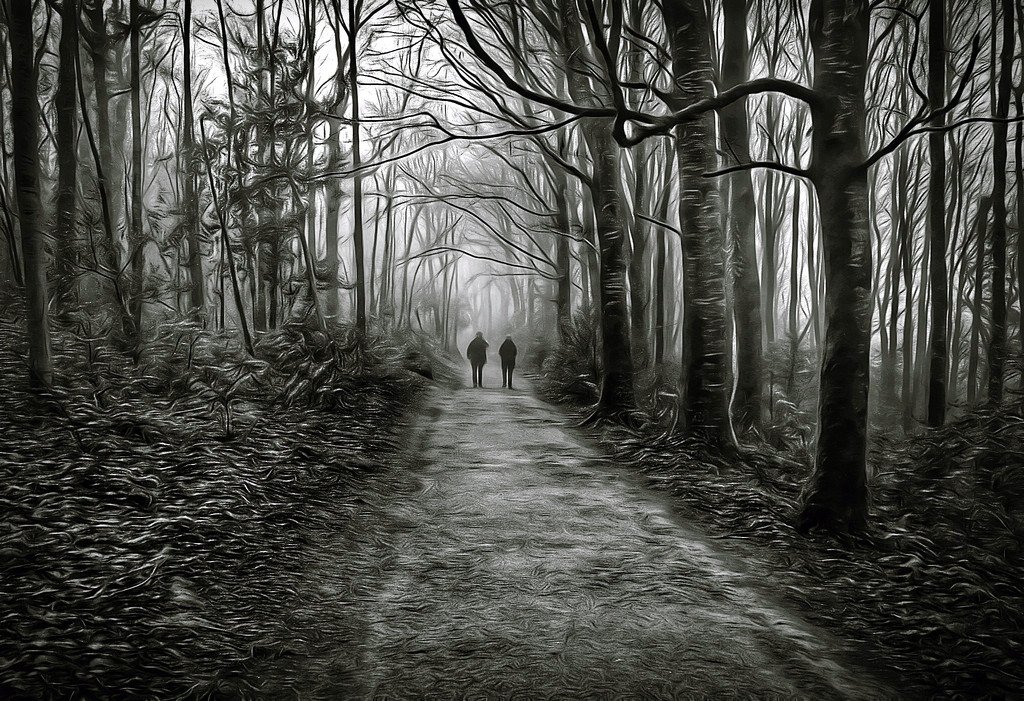 rush hour in Coole Woods by jack4john
