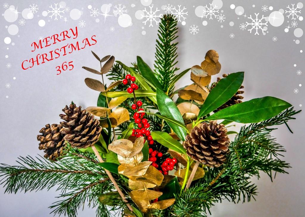 MERRY CHRISTMAS EVERYONE by carolmw