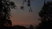 15th Dec 2019 - Sunset