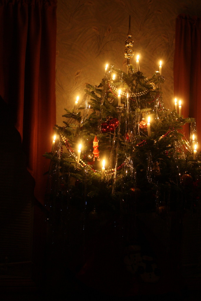 Merry Christmas to all my friends on 365. by bruni