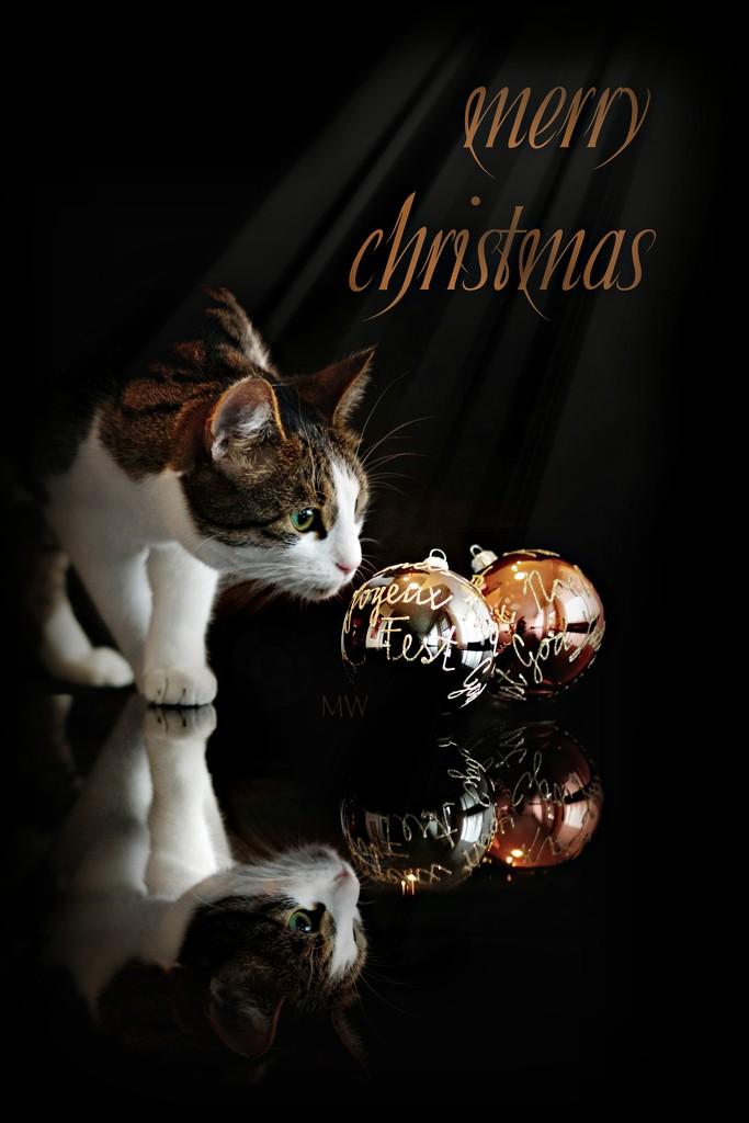 2019-12-24 Frohe Weihnachten / Joyeux Noël / Merry Christmas / Buon Natale / Feliz Navidad by mona65