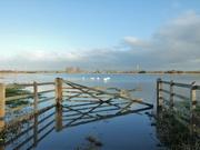21st Dec 2019 - Flood plain