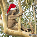 Santa takes a well earned break by koalagardens