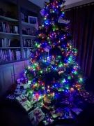 25th Dec 2019 - Christmas Morning