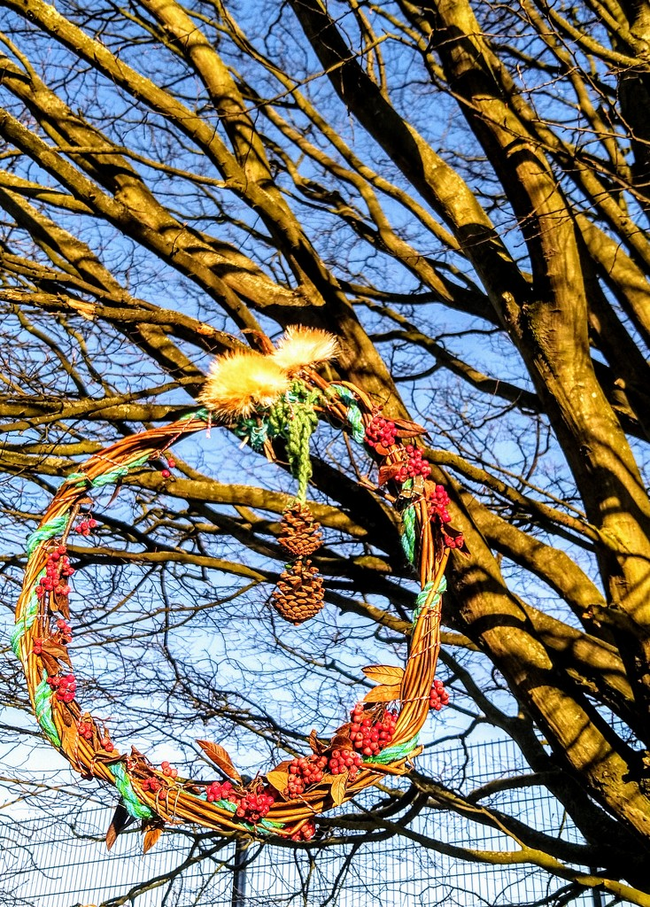 Park tree wreath by boxplayer