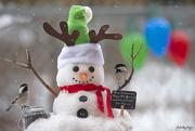 25th Dec 2019 - Christmas Day!