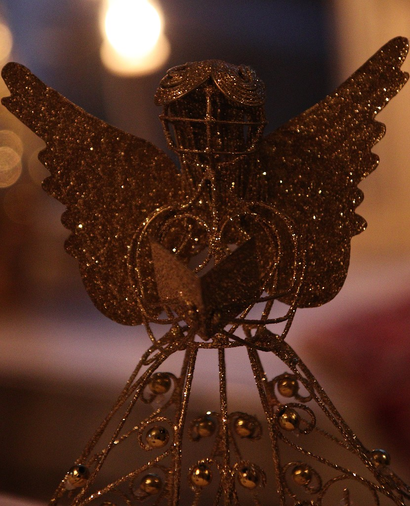 Day 359:  Christmas Angel by sheilalorson