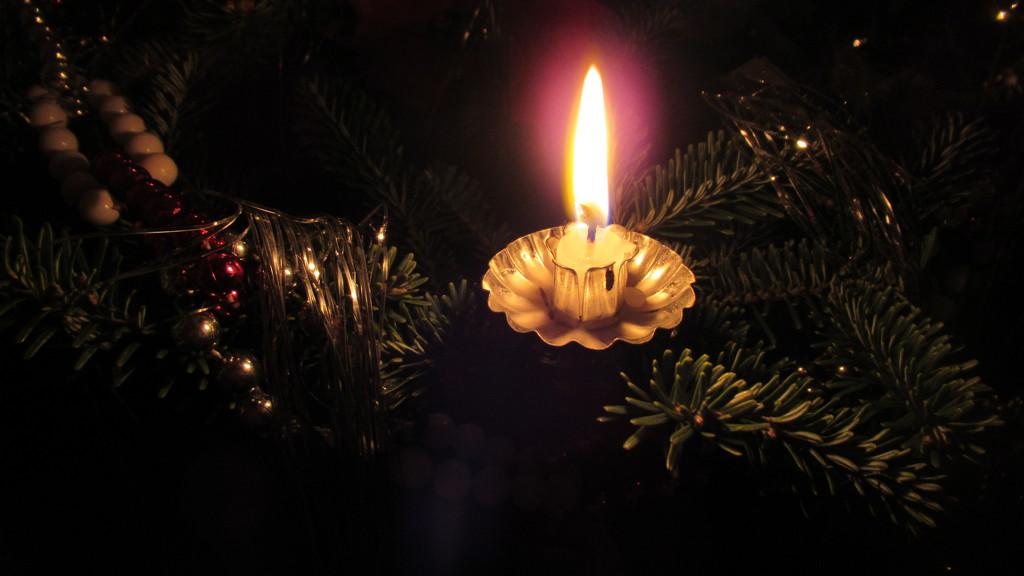 Candle light by bruni