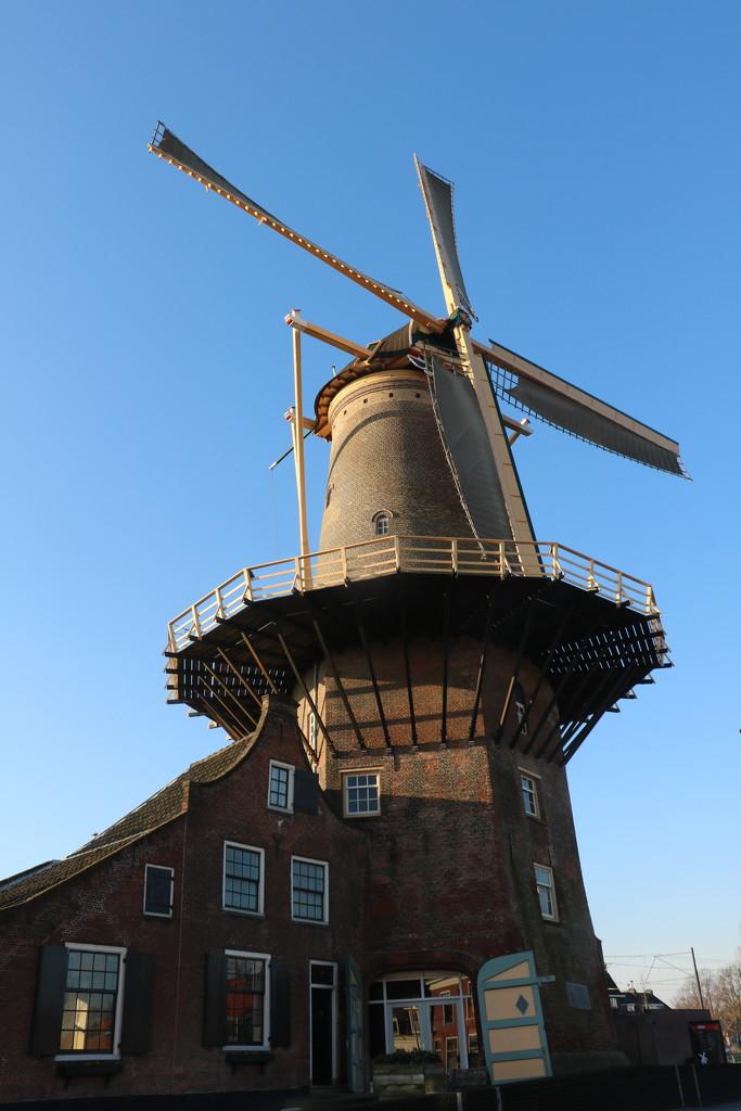 Windmill in Delft by momamo